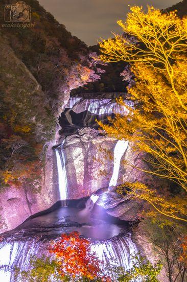 袋田の滝,ライトアップ,紅葉,