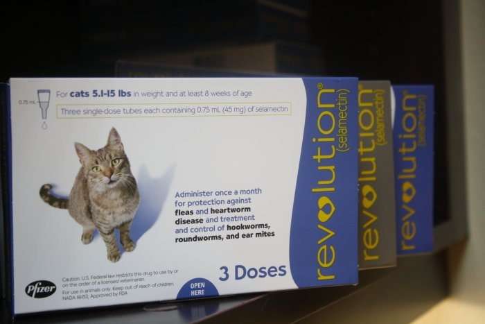 Revolution-Flea,tick, and heartworm prevention.  Frontline stopped working years ago for us and many friends.  This product is 100% effective and safe on our cat!