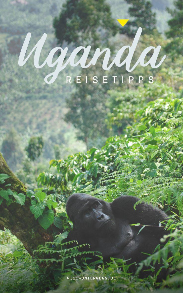 Uganda Reisetipps - alles was du wissen musst