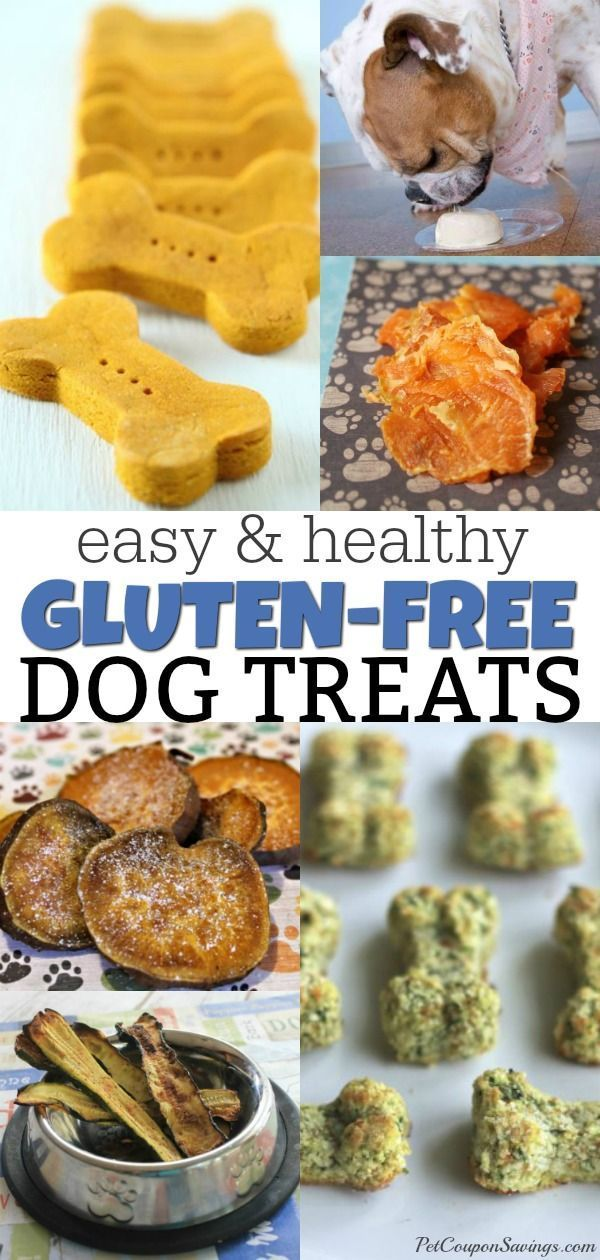 Do You Have A Dog That Has A Gluten Allergy Be Sure To Check Out