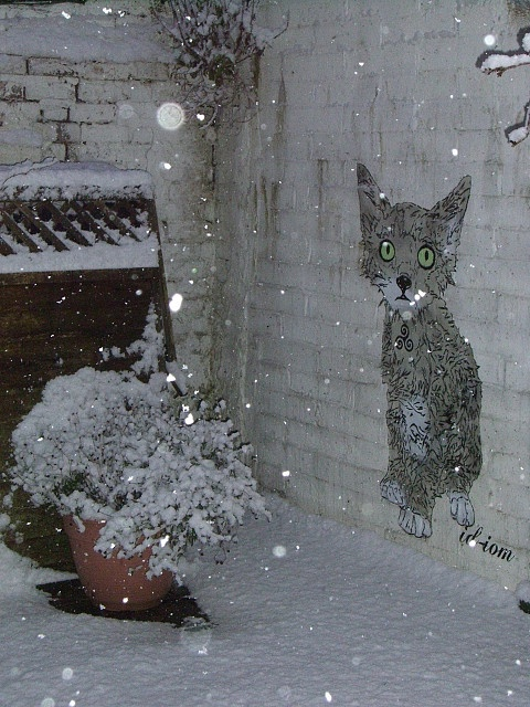 "Street art | Mural ""Pussy gets cold"" (London, England) by id-iom"