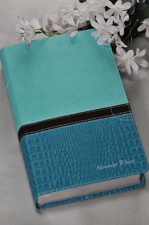 Womens Devotional Bible NIV Turquoise & Blue – Celebrate Faith