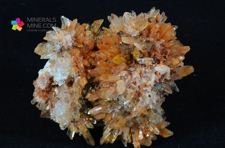 Creedyt - Rzadki i efektowny minerał z gromady wodorotlenków. Piękne wykształcone i zakończone kryształy. Pochodzenie: Kop. Navidad, Abasolo, Durango, Mexico Wymiary: 6.8 x 6.2 x 4.5 cm Waga: 114 g Wzór chemiczny: Ca3Al2(SO4)(F,OH)10•2(H2O)