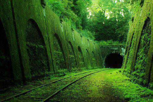 8: Abandoned railroad in France | Beauty Among The Ruins: See Some of the Worlds Most Beautiful Abandoned Places | Co.Create: Creativity \ Culture \ Commerce