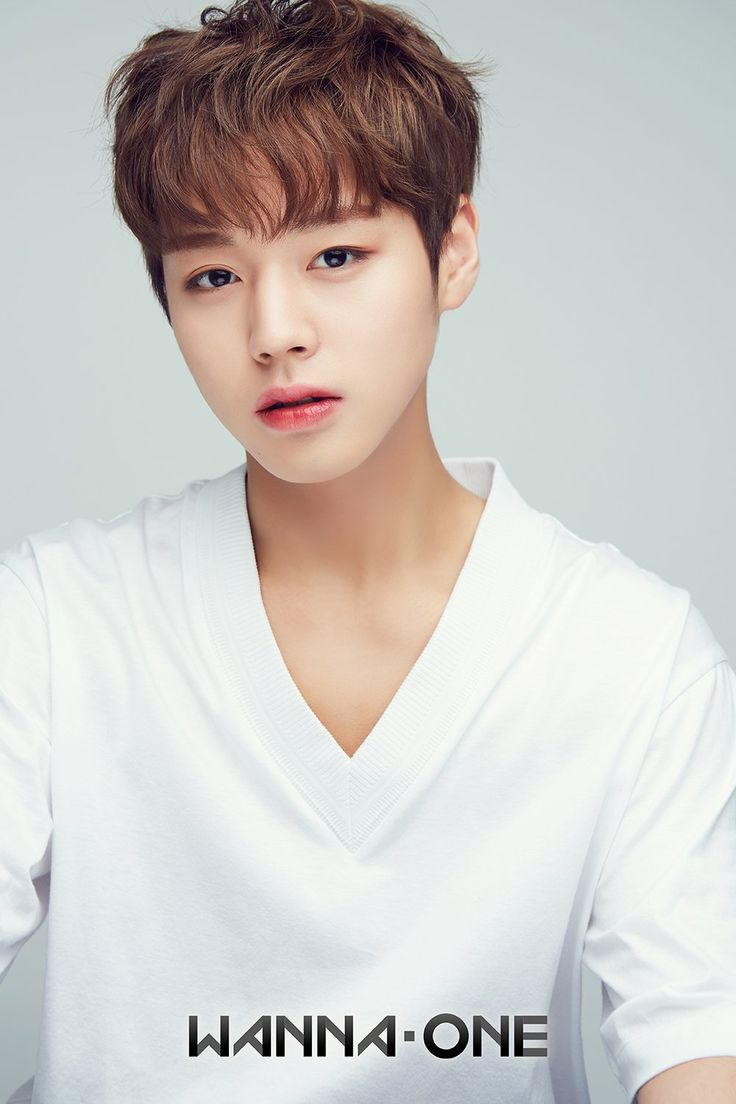 Park Jihoon • Wanna One