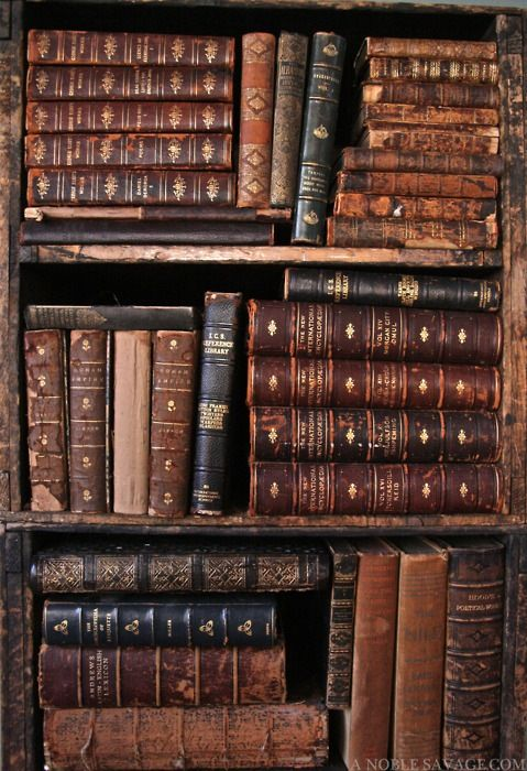 I love everything about old books, the feel, the smell, the look.
