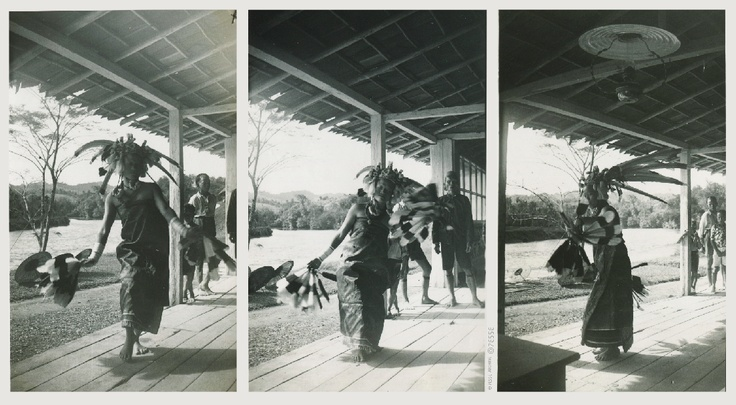 Dancing  ca.1920's   #Indonesia #dayak #tribal