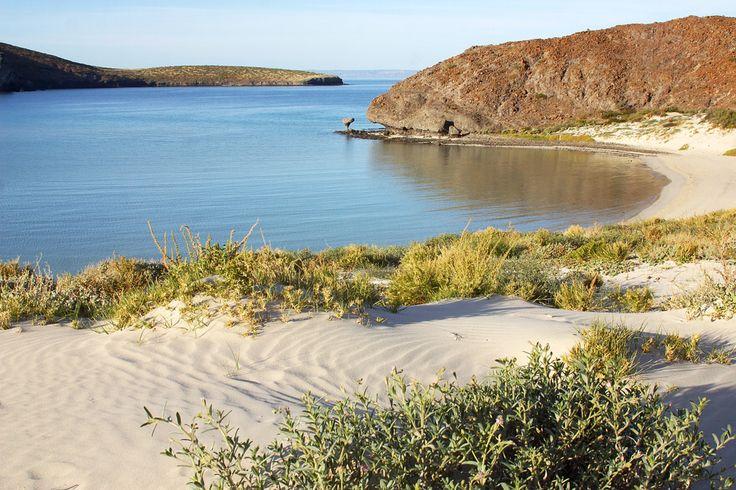 #PlayaBalandra, un remanso de tranquilidad en La Paz, Baja California. Un espacio donde podrás encontrar #tranquilidad, belleza y buenos momentos.