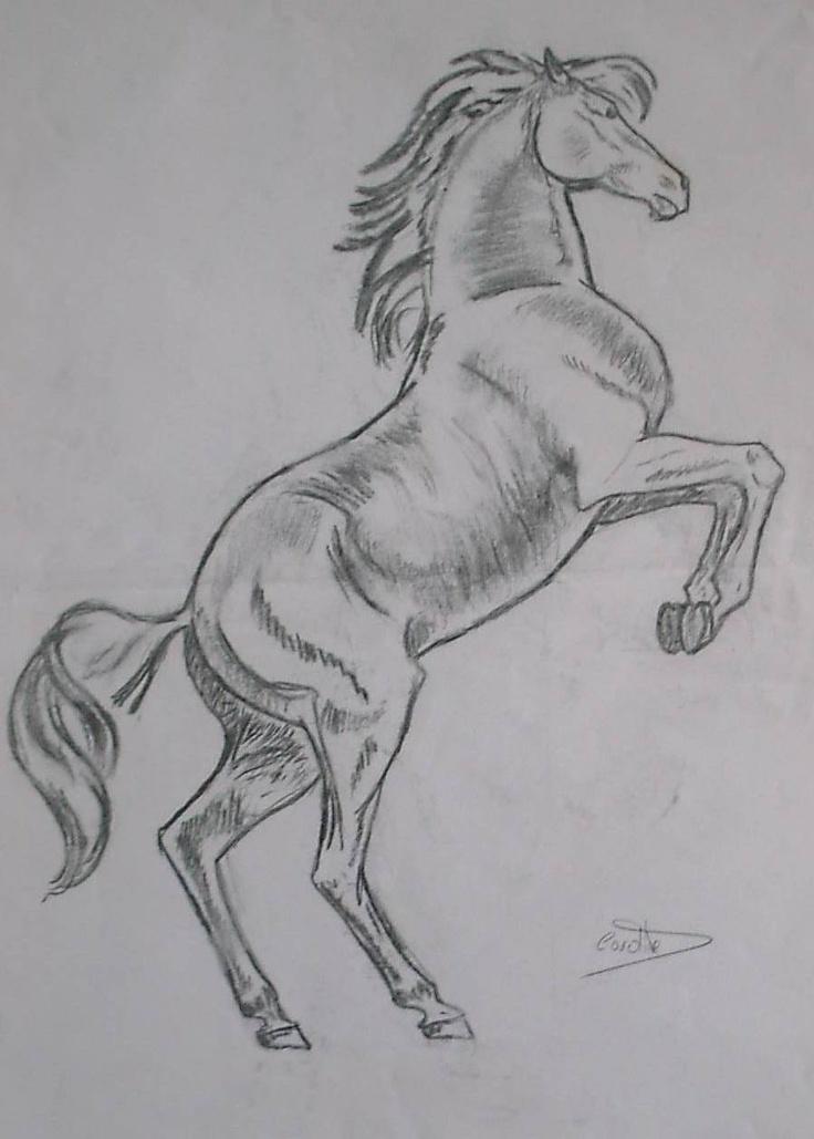 Cheval dessin au crayon dessin pinterest crayons - Image cheval dessin ...