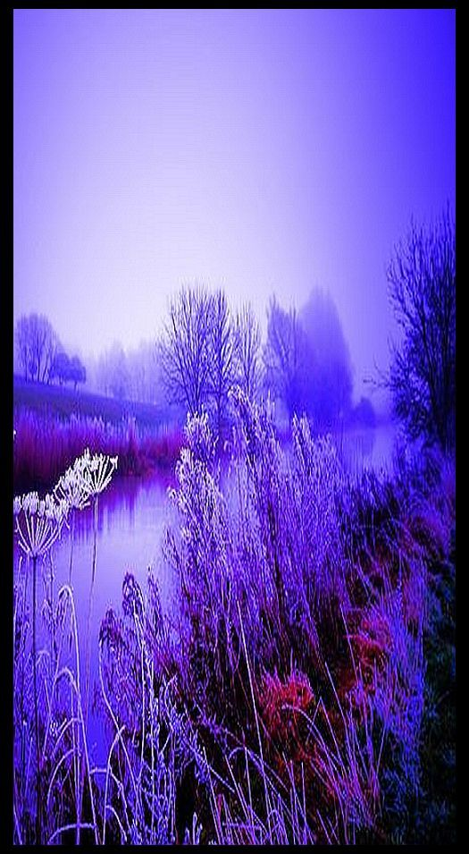 River Nene - UK England - Frost Morning Winter purple #via: 5 0 0 p x . c o m  --  D a v i d  M i l l s