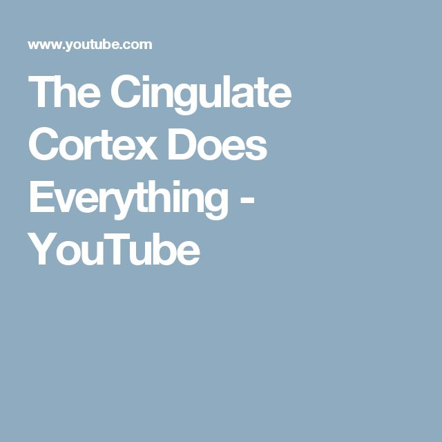 The Cingulate Cortex Does Everything - YouTube