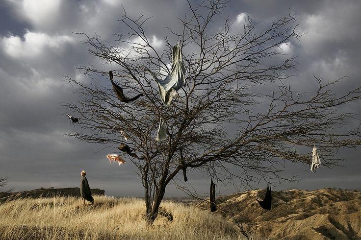 """Artista: Katya Demidova, """"Sin Titulo"""", del proyecto """"Dolor Fantasma"""", fotografía digital impresa a color, 2012."""