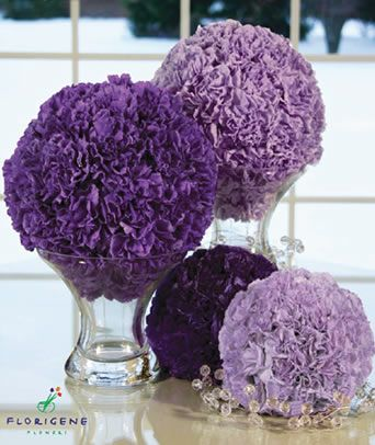 Purple and Lavender Carnations are part of the Moon-Series Carnation Series which are only grown by a select number of growers. Moon-Series Carnations are available online at GrowersBox.com.Centrepieces Tables, Wedding Flower, Flower Decor, Purple Tables Decor, Wedding Purple Centerpieces, Wedding Venues, Purple Carnations Centerpieces, Venues Decor, Purple Flower