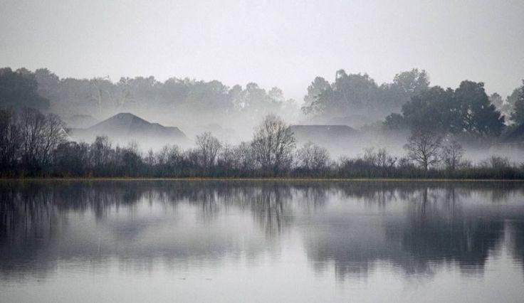 """Morning"" by Ronnie Clark https://gurushots.com/alemorkam/photos?tc=2f714573798c4445d3810149174a9e47"