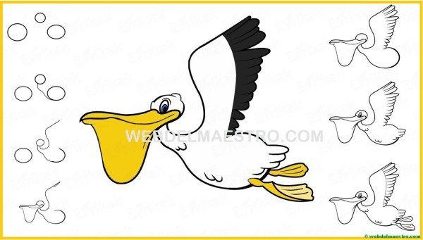 Aprender A Dibujar Paso A Paso Ii Web Del Maestro Dibujo Paso A Paso Aprender A Dibujar Pelicano Dibujo