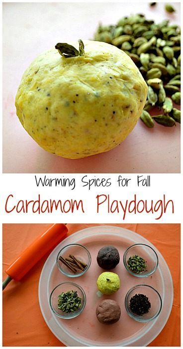 cardamom playdough for fall