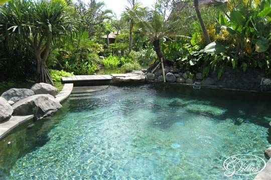 2952 Best Natural Swimming Pools Ponds And Water Stuff Images On Pinterest Waterfalls