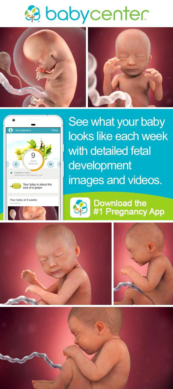 Track your pregnancy and baby's development with the BabyCenter app! Download the award-winning app 3 in 4 parents trust most and get access to tools, tips, and our Community.