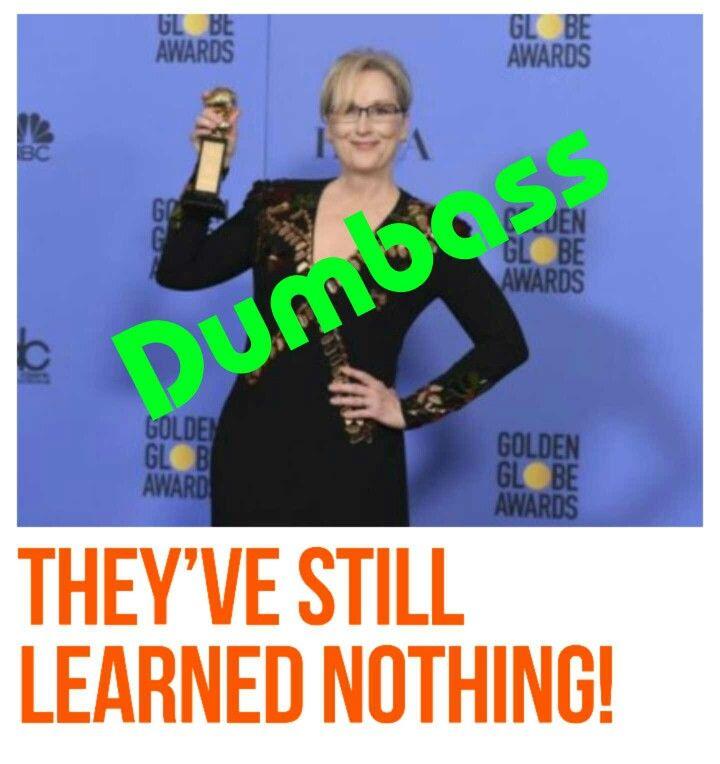 Elitist hypocritical .......aka: Meryl Streep (loud-mouthed idiot)