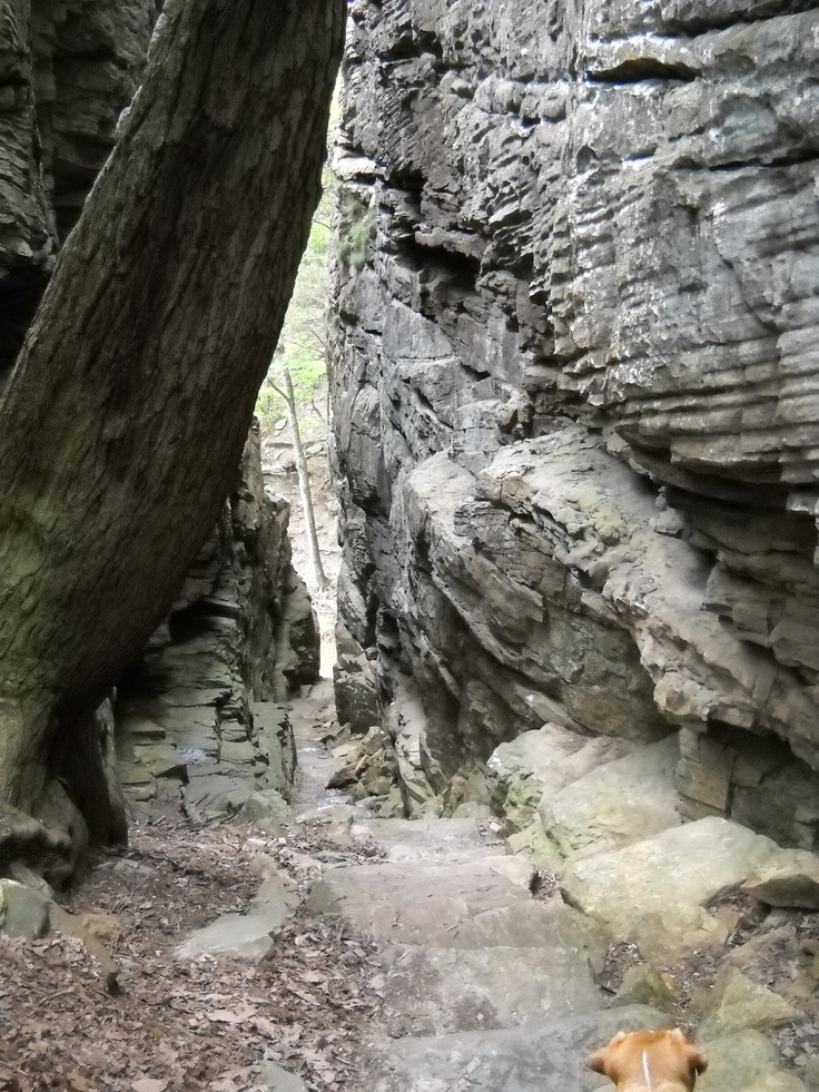 Looking down the Stone Door. Native Americans used this passageway to access Big Creek Gulf. & 9 best Stone Door Natural Area - South Cumberland State Park TN ...