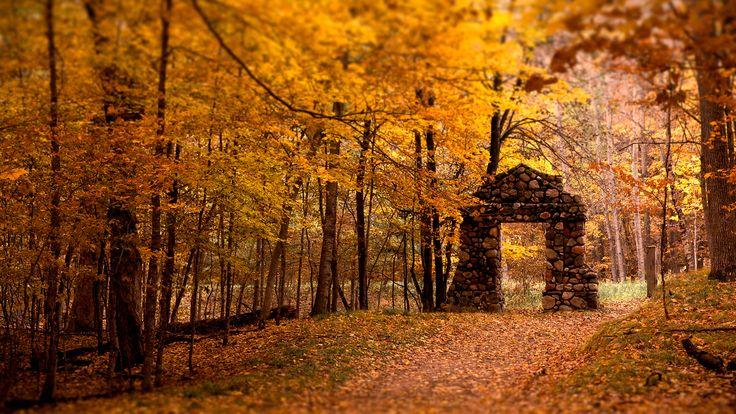 Fall!: Doors, Fall Wallpapers, Autumn Photos, Autumn Leaves, Color, Autumn Fall, I Love Fall, Stones, Gates