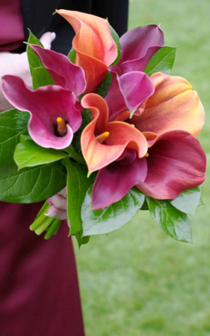 flowers native to jamaica bouquet - Google Search