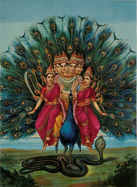 Murugan by Raja Ravi Varma.Peacock's Spiritual Connection: Peacock is linked to the Hindu Goddess Lakshmi who represents benevolence, patience, wisdom, kindness, compassion and good-luck. Iridescent part of tail-feather, with the Eye, also adorns Lord Krishna's Head-gear [Mukat]. Peacock is associated with Boddhisatva Kwan-yin as a symbol of love, forgiveness and motherly-nurture.