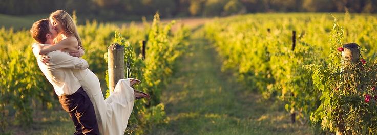 #Vineyard #Wedding #Wijngaard #Bruiloft