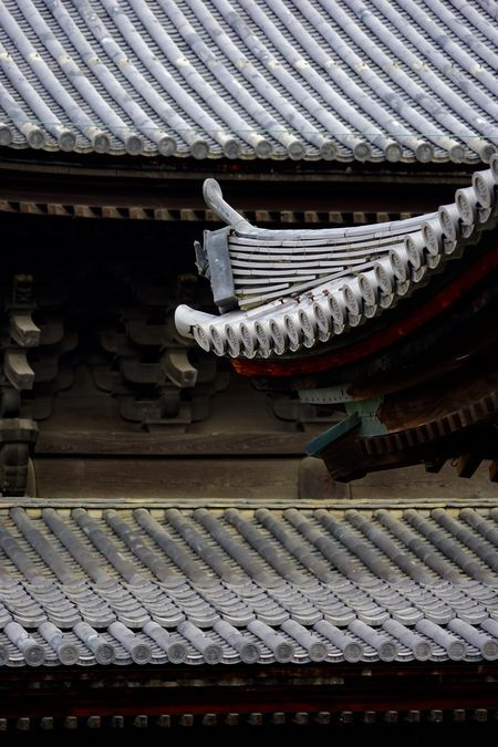A tile-roofed temple Photo by Tatsuo Kawasaki — National Geographic Your Shot