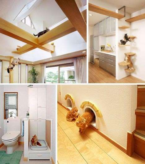 Make space for the kitties! Feline Interior Design - Wall-Climbing Home Decor For the Stylish Cat Owner | Tiny Homes