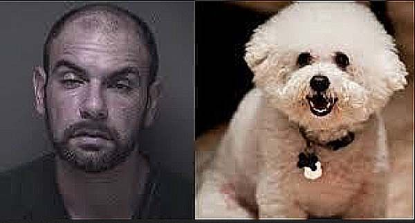 Man Tortures Ex-Girlfriend's Dog to Death and Complains About His Bad Press! (Video)  A Staten Island man who pled guilty to animal cruelty in the death of his ex-girlfriend's dog at her New Jersey home is on his way to jail.