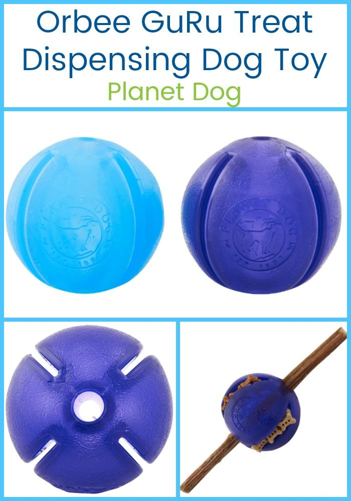 Pin On Play Time Dog Toys