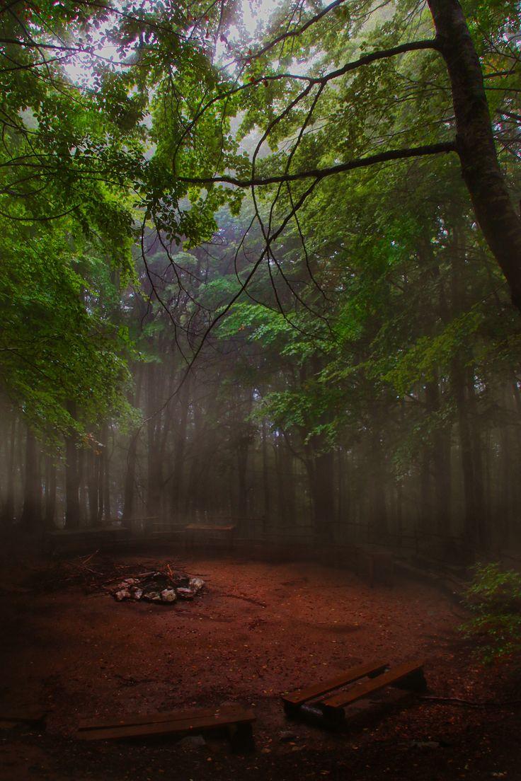 The autumn hole by George Leontaras on 500px
