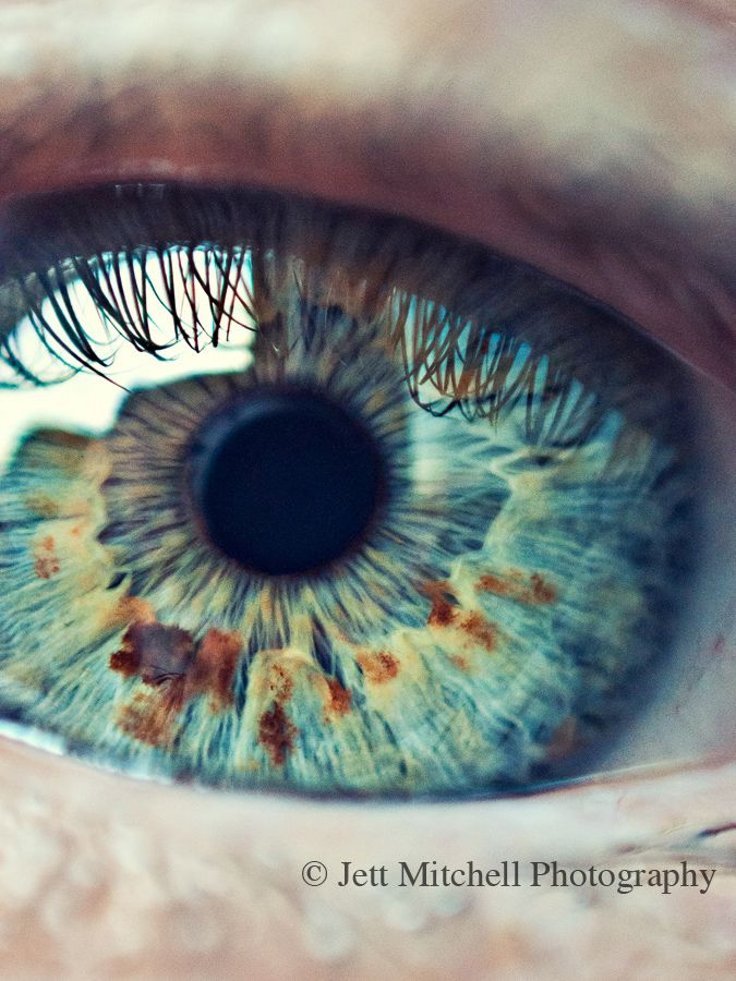 Eye | Iris | Pupil | 目 | œil | глаз | Occhio | Ojo | Color | Texture | Pattern | Macro | Eye. by BlueStar159