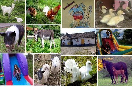 Fairy Fort Farm - Home