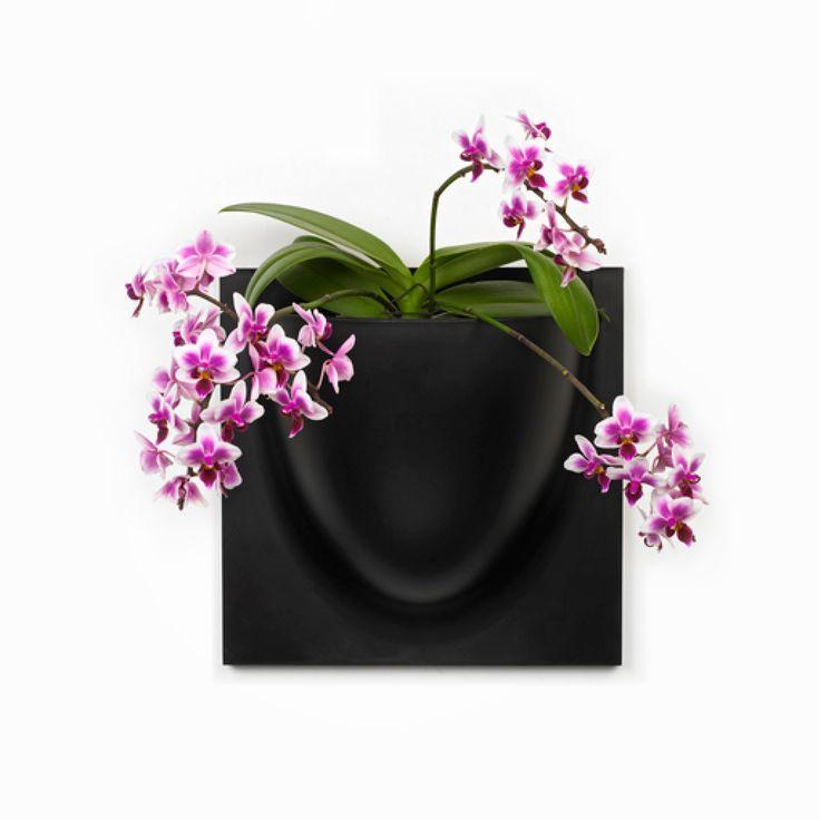 Elegant vægkrukke fra VertiPlants, som kan hænge på væggen alene eller flere kan sættes sammen. VertiPlants vægkrukke kan bruges til planter og til meget andet - kun din fantasi sætter grænserne.
