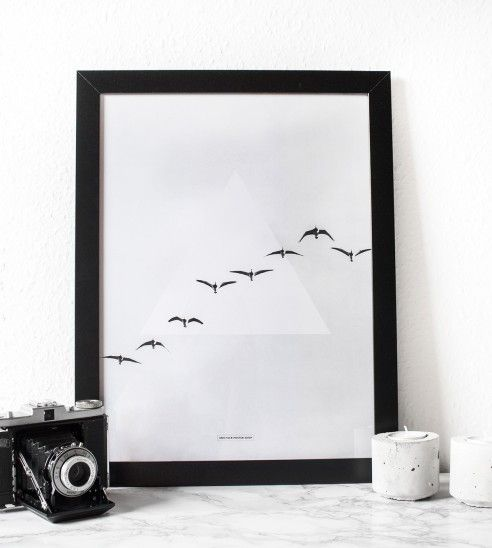 Fly Away photography - A3 Poster - Another Poster Shop
