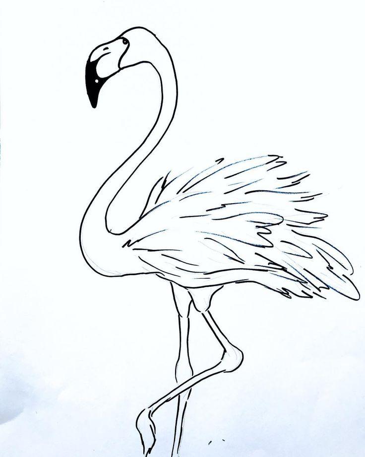 Фламинго черно белые картинки
