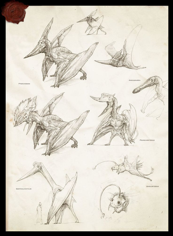 Pterosaurs by IRIRIV on deviantART
