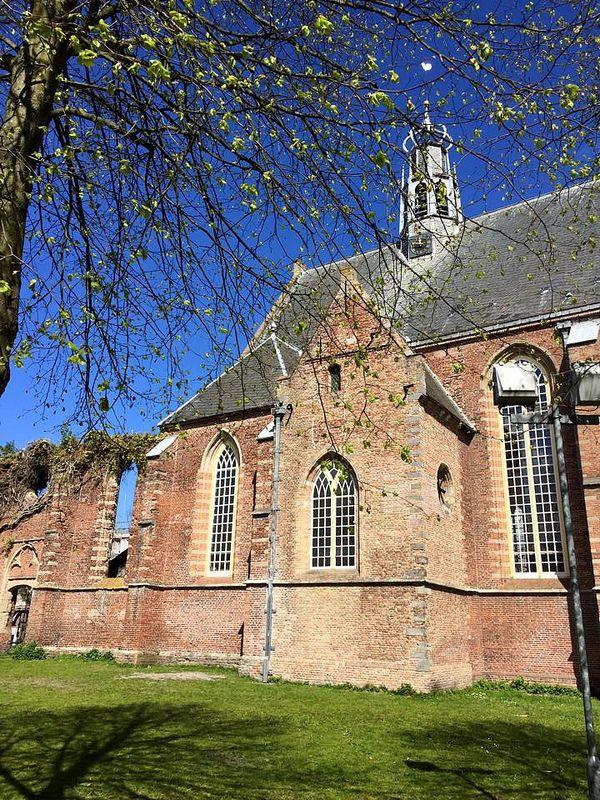 Ruïnekerk Bergen NH - voorjaar 2015 - foto door Maaike Klein