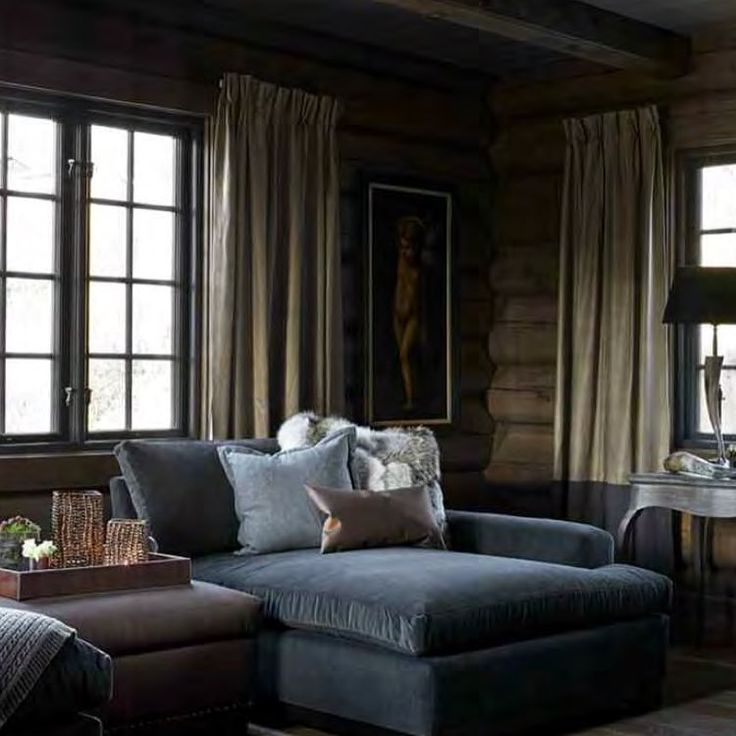 Dark livingroom : gray velvet couch, log cabin walls
