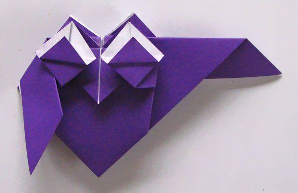 Ugle foldes, 29