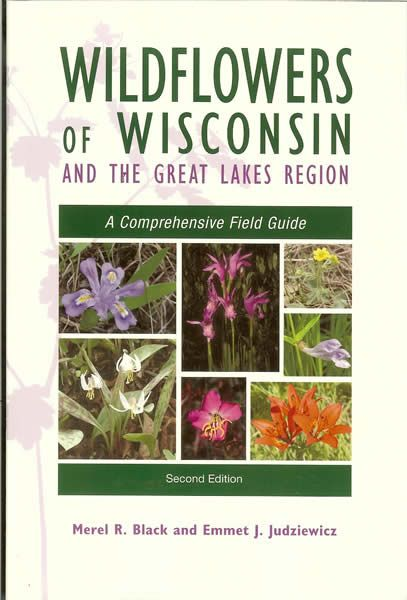 Wisconsin Employment and Labor Laws
