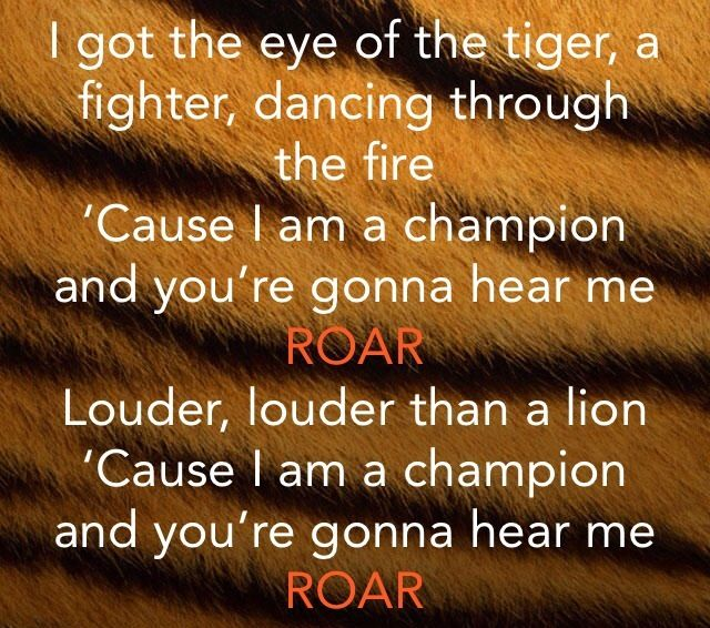 Image Gallery katy perry roar lyrics
