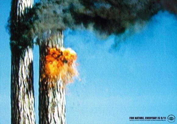 9/11 al naturale    Durissima e immediata questa campagna promossa dalla Fondation Nicolas Hulot, ONG francese per la tutela dell'uomo e dell'ambiente. Ogni giorno, per la natura, è un 11 settembre. Due alberi in fiamme in un fermo immagine televisivo, richiamano alla memoria le drammatiche immagini dell'attentato alle Torri Gemelle.