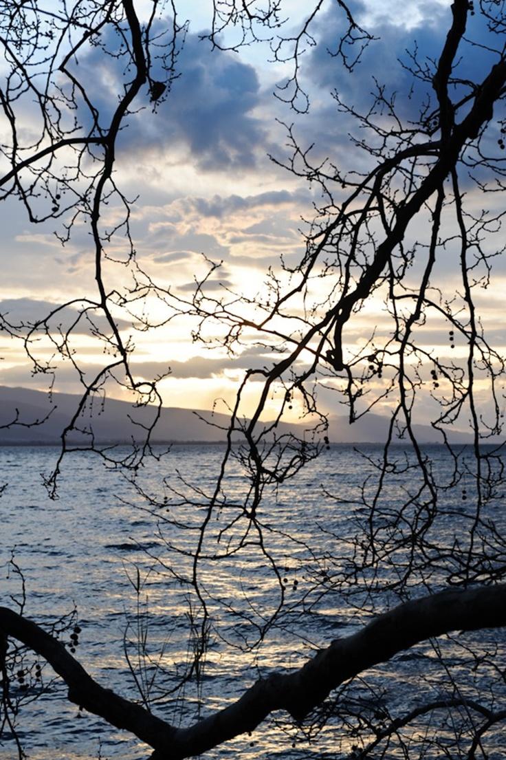 Τριχωνίδα - Η παραλίμνια περιοχή της Μυρτιάς