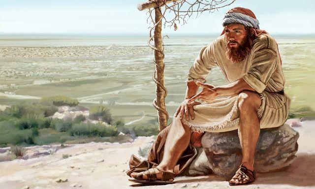 Jonás 4:5-7 Y salió Jonás de la ciudad, y acampó hacia el oriente de la ciudad, y se hizo allí una enramada, y se sentó debajo de ella a la sombra, hasta ver qué acontecería en la ciudad. Y preparó Jehová Dios una calabacera, la cual creció sobre Jonás para que hiciese sombra sobre su cabeza, y le librase de su malestar; y Jonás se alegró grandemente por la calabacera. Pero al venir el alba del día siguiente, Dios preparó un gusano, el cual hirió la calabacera, y se secó. ♔