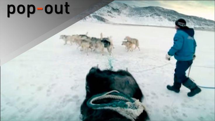 """Das offizielle Video zu """" Wie weit ist vorbei"""" aus dem Album """"Die Suche geht weiter"""" (2008). Songtext: Sag wie weit ist vorbei wie hoch lebt das Land wie tie..."""