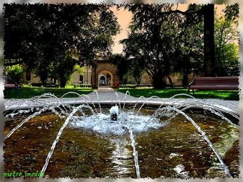 Giochi d' acqua a Udine ai giardini del Torso