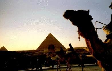 The pyramids, Kairo, Egypt (photo AN)